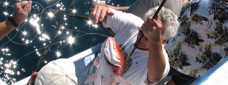 Index deep sea inshore alabama charter fishing for Gulf shores inshore fishing